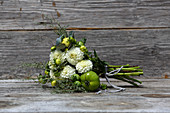 Bouquet of white pompom dahlias, grey santolina, houseleek rosettes and green tomatoes