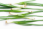 Fresh green chives on white background
