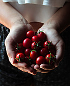 From above ripe small cherry tomatoes with green stems in hands