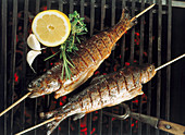 Whole brook trout on wooden sticks on a grill