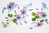 Sommer-Kollage mit Mannstreu, Lavendel und Zauberglöckchen