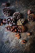 Various pine cones on a wooden surface