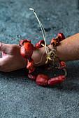Getrocknete Piure (Pyura chilensis) auf Schnur gefädelt als Scmuck