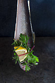 Fish with lemon and herbs
