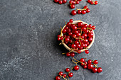 Redcurrant in a bowl on dark concrete background