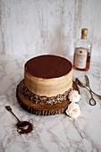 A tiramisu cake