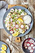 Kartoffelsalat mit geräucherter Forelle, Radieschen und Joghurtsauce