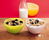 Two bowls of grains with milk, one with blackberries and one with blueberries