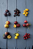 Various types of plums on a blue wooden surface