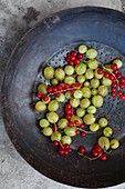 An antique collander filled with red currants and gooseberries