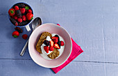 Weetabix (wholemeal wheat breakfast biscuits for soaking, England) with milk and berries