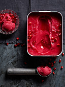 Raspberry Sorbet with Pomegranate