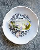 Geräucherte Auster