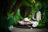 Vegan chocolate cake with rhubarb and soy butter cream on a garden table
