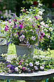 Strauß aus Wiesenblumen: Karthäusernelke, Kronwicke, Vogelwicke und weißes Labkraut