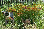 Beet mit Ringelblumen, Strauß im Krug auf Hocker