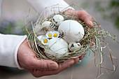 Frau hält kleines Osternest aus Heu mit Eiern, Gänseblümchen und Federn