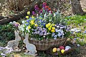 Bunter Frühlingskorb mit Osterdeko im Garten, Osterhasen und Ostereier