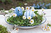 Gänseblümchen in flacher Schüssel mit Ostereiern