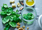 A glass jar with basil and ingredients for pesto