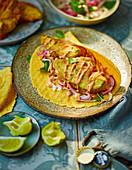 Taco mit Avocado, Chipotlecreme und eingelegtem Krautsalat