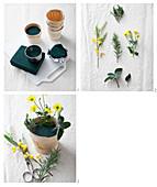 Gesteck mit Chrysanthemen, Mimosen und Rosmarin