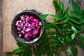 Rosenblüten zum Trocknen in Schale
