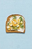 Belegtes Brot mit Butter, Fisch und Dill