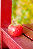 Red apple on chair, close up
