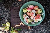 Geschälte Äpfel und Apfelernte in einem Eimer auf einem Metallschild