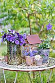 Violetter Spätsommerstrauß mit Sommerastern und Leberbalsam
