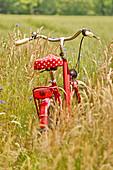 Rotes Fahrrad im Feld