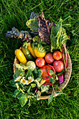 A vegetable basket in the grass
