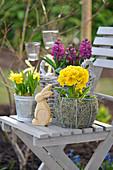 Osterdeko mit Narzissen, Hyazinthen, Primeln auf einem Gartenstuhl, Holz-Osterhase