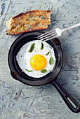 Fried organic egg with fresh basil and shallot bread