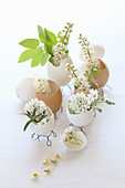 Egg shells on wire bases used as vases for tiny white flowers