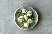 Herb labneh balls in olive oil