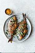 Grilled gilt-head bream with mango sauce