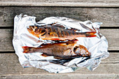 Smoked perch on aluminum foil