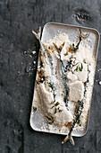 Ingwer-Eisenkraut-Makrelen in der Salzkruste