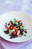 Basil mousse with chocolate almond sprinkles and strawberry coulis