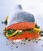 Smoked salmon with dill and spices