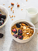 Granola bowl with blackberries and almond with coconut milk in the bowl