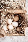 Frische Bio-Eier auf Stroh im Holzkorb