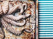 Raw octopus on baking sheet background