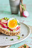 Whole-grain sandwich with fried radish, boiled egg, herbs and pepper