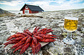 Crayfish on a serving platter and a glass of beer on rocks (Scandinavia)