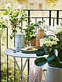 Runder Klapptisch auf Balkon umgeben von Blumen