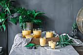 Mangomousse in Dessertgläsern auf Tisch dekoriert mit Grünpflanzen