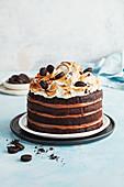 Chocolate hazelnut s'mores cake